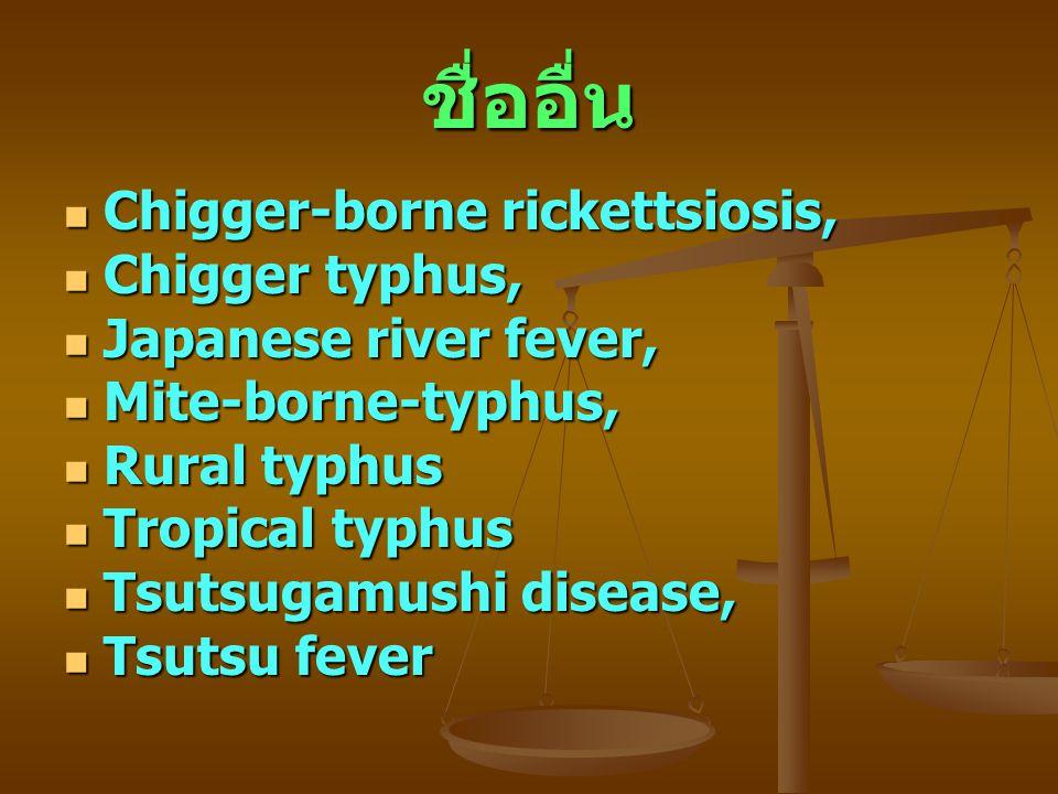 ชื่ออื่น Chigger-borne rickettsiosis, Chigger typhus,
