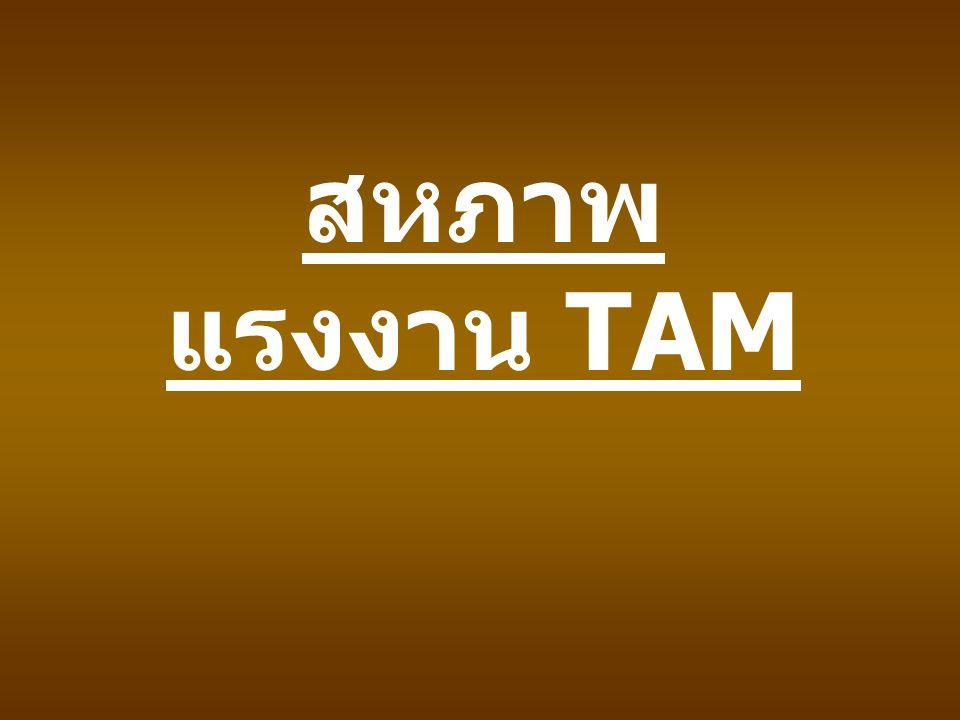 สหภาพแรงงาน TAM