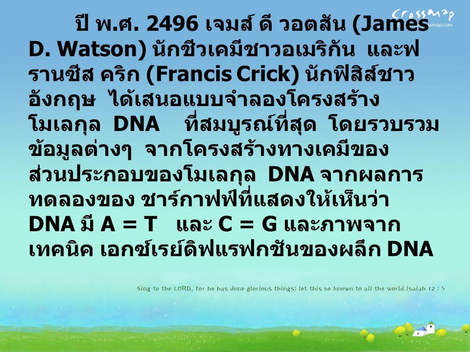 ปี พ. ศ. 2496 เจมส์ ดี วอตสัน (James D