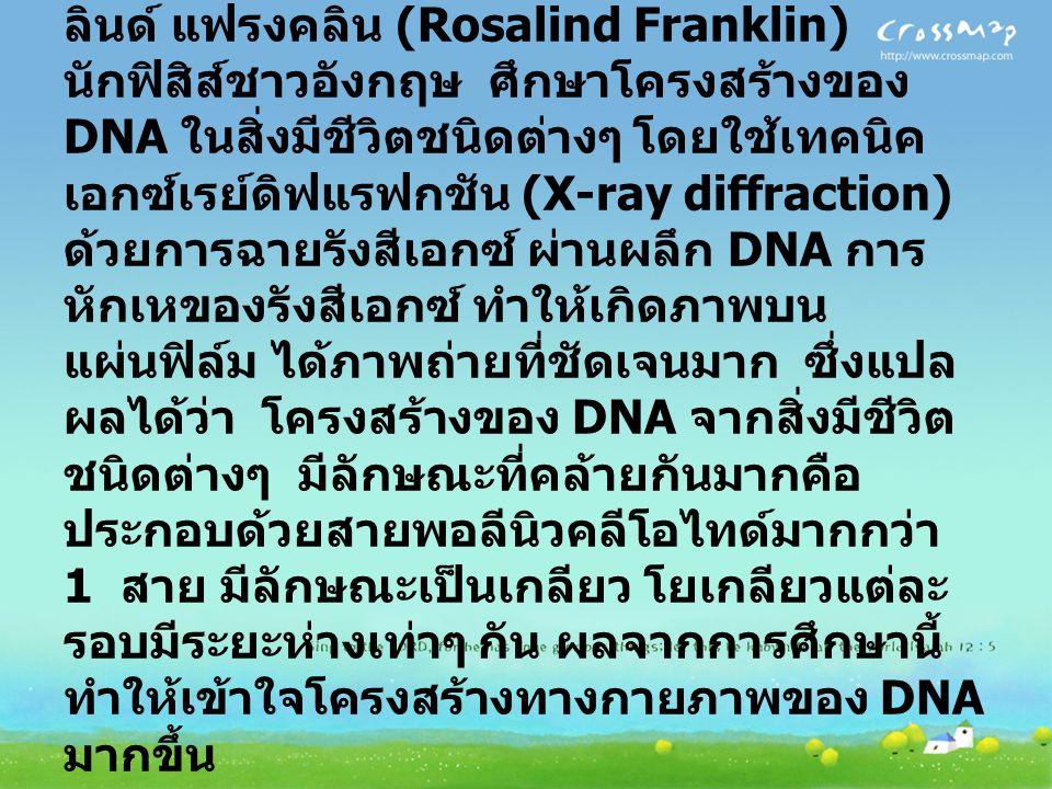 โครงสร้างของ DNA ปี พ.ศ. 2493-2494 มัวริส เอช เอฟ วิลคินส์ (Maurice H.F.