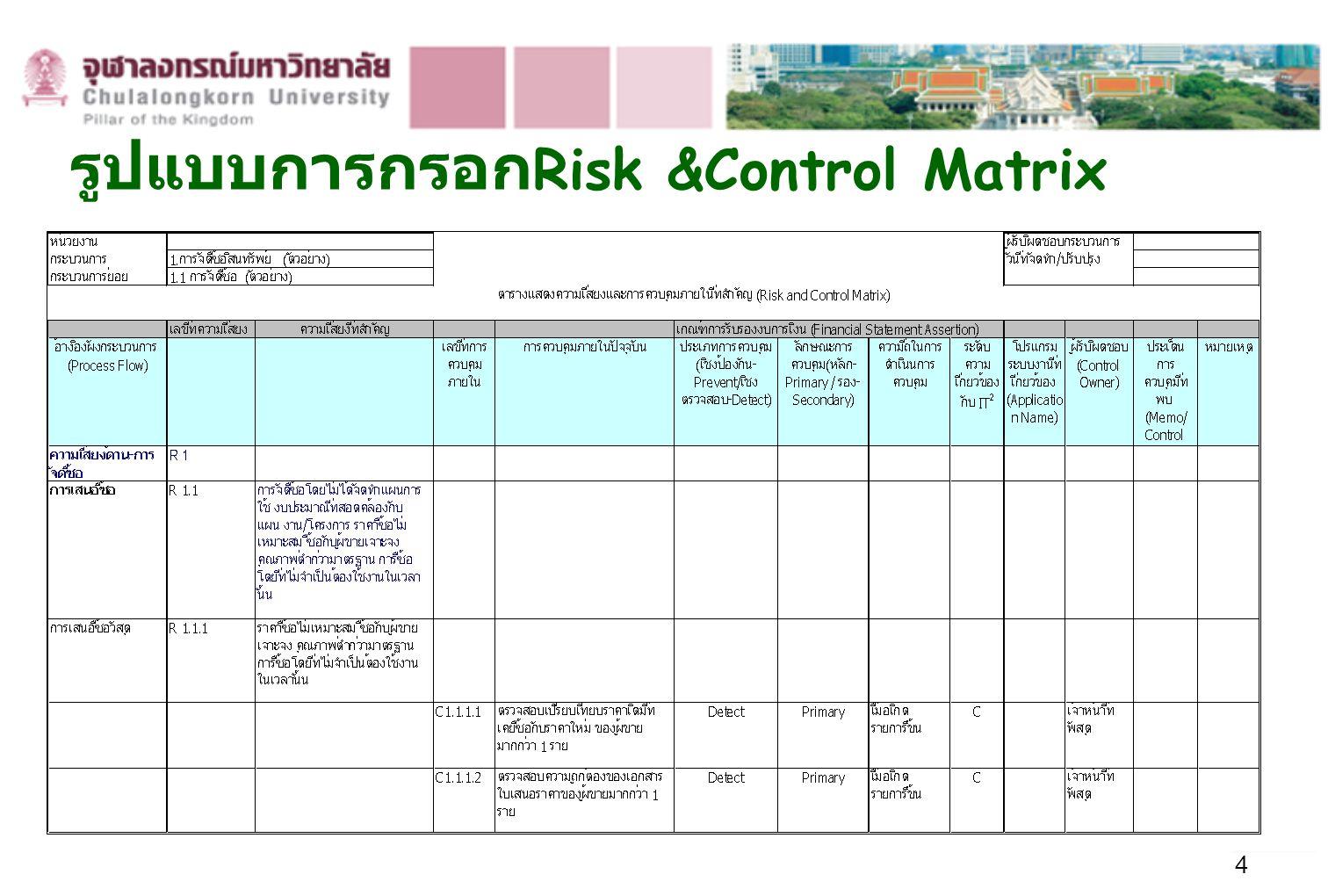 รูปแบบการกรอกRisk &Control Matrix