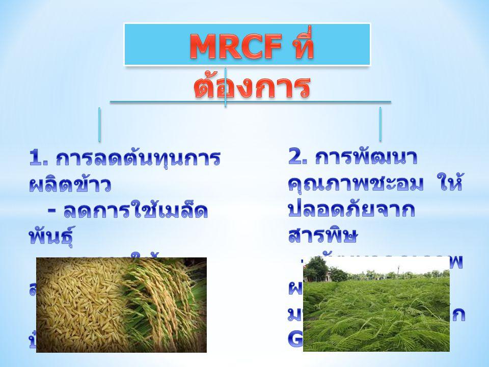 MRCF ที่ต้องการ 1. การลดต้นทุนการผลิตข้าว