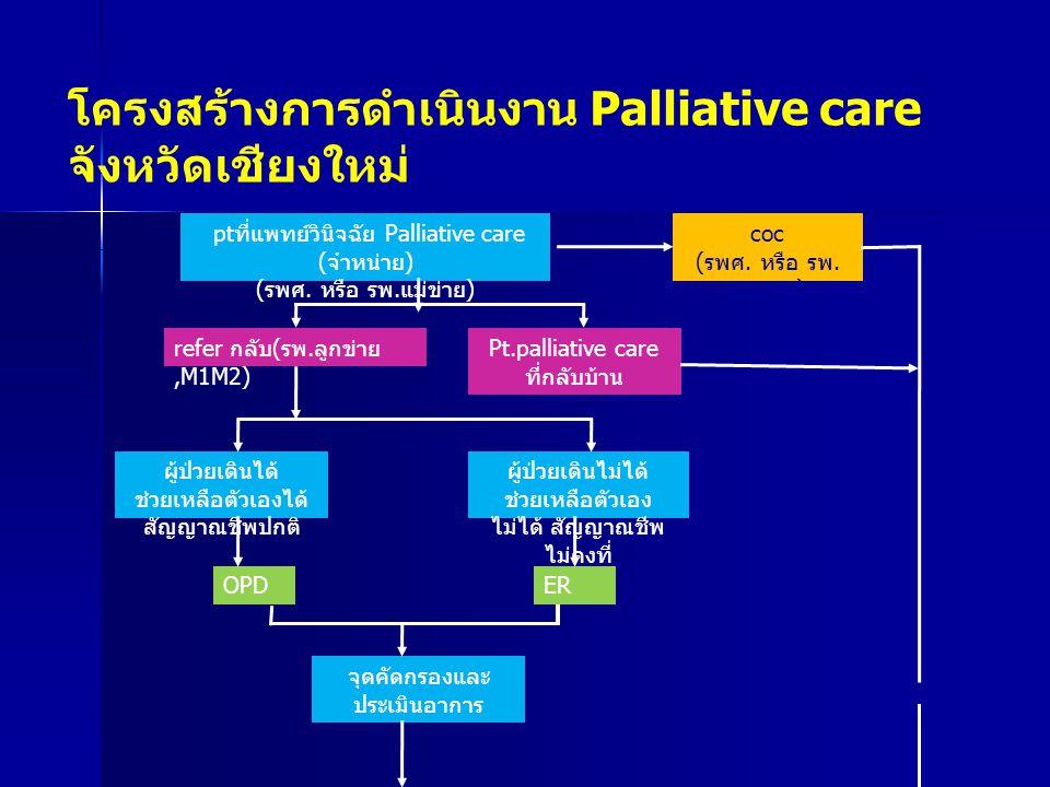 โครงสร้างการดำเนินงาน Palliative care จังหวัดเชียงใหม่