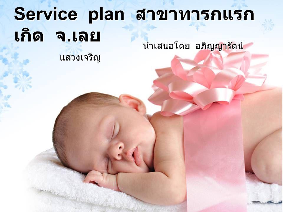 Service plan สาขาทารกแรกเกิด จ.เลย