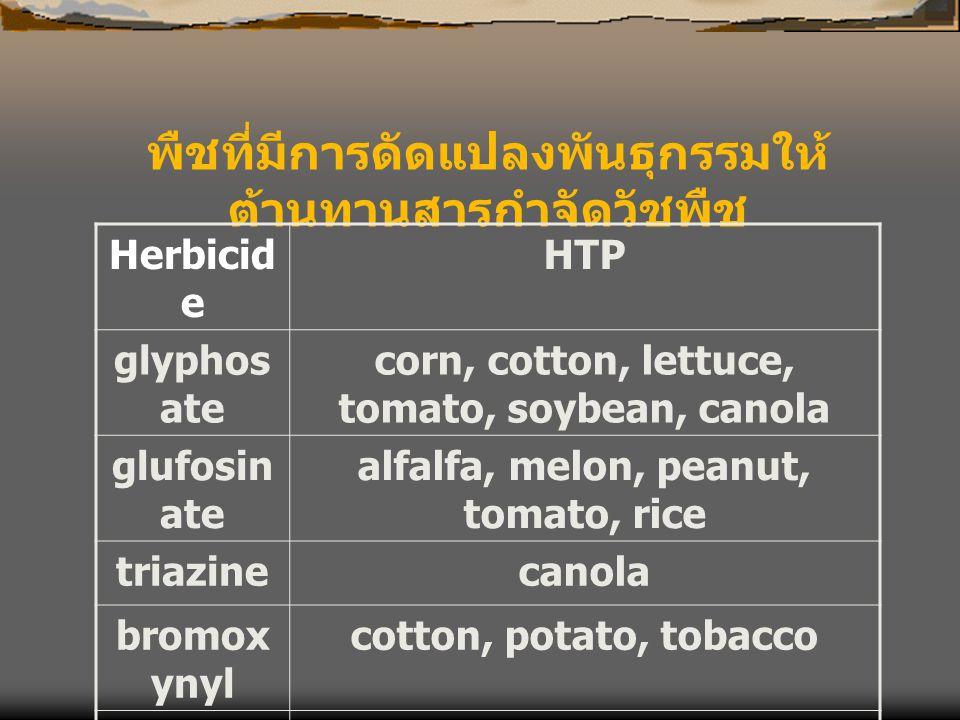 พืชที่มีการดัดแปลงพันธุกรรมให้ต้านทานสารกำจัดวัชพืช