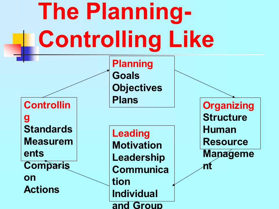 The Planning-Controlling Like
