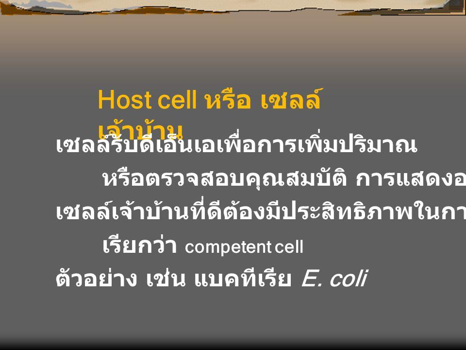 Host cell หรือ เซลล์เจ้าบ้าน