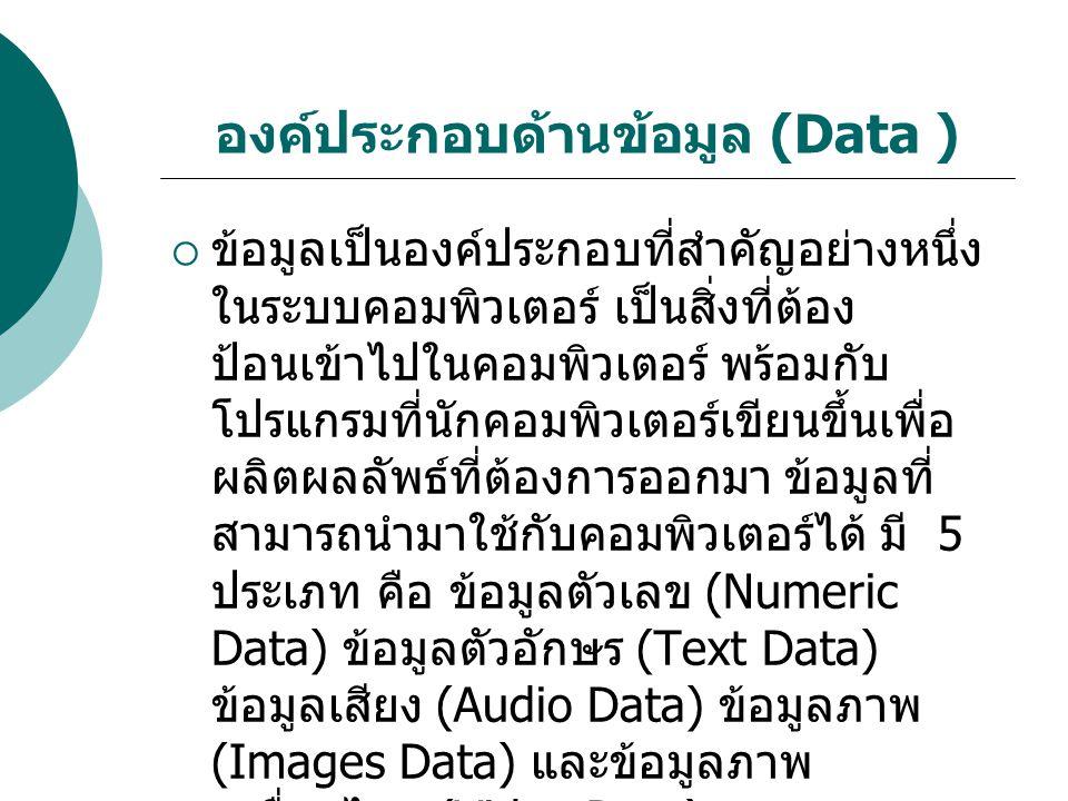 องค์ประกอบด้านข้อมูล (Data )