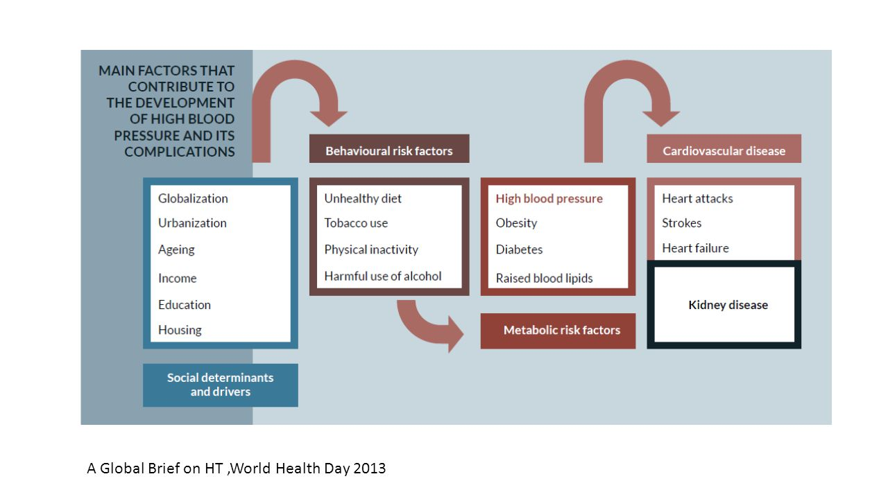 A Global Brief on HT ,World Health Day 2013