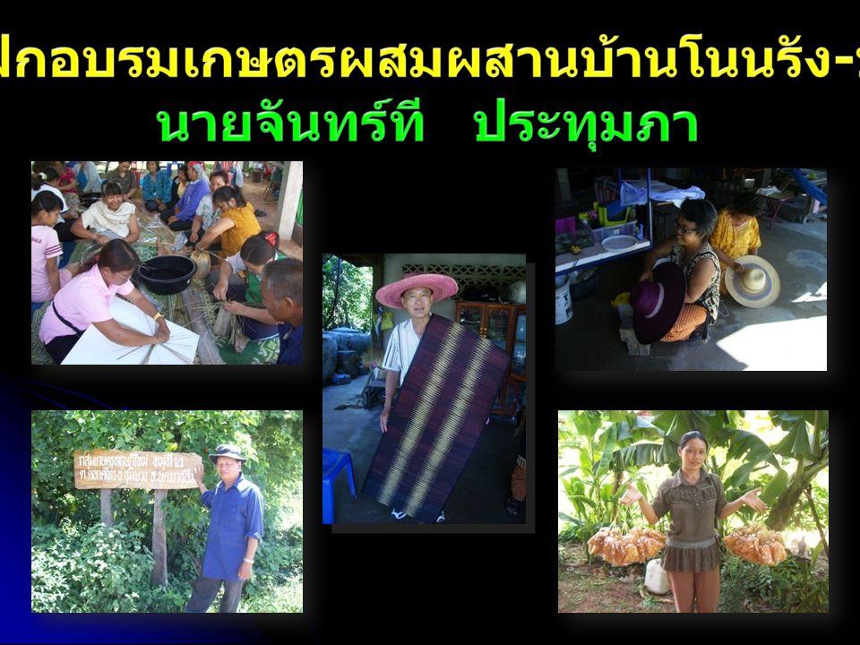 ศูนย์ฝึกอบรมเกษตรผสมผสานบ้านโนนรัง-บูรพา