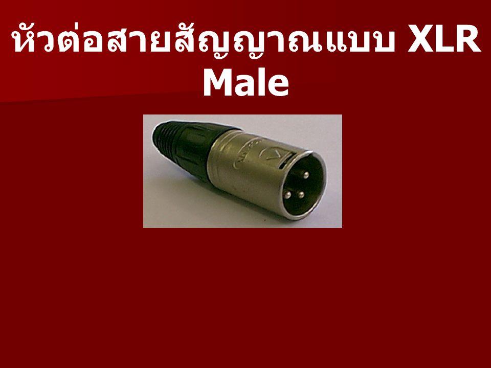 หัวต่อสายสัญญาณแบบ XLR Male