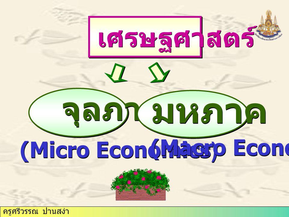 เศรษฐศาสตร์ จุลภาค มหภาค (Macro Economics) (Micro Economics)