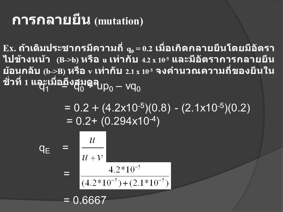 การกลายยีน (mutation)
