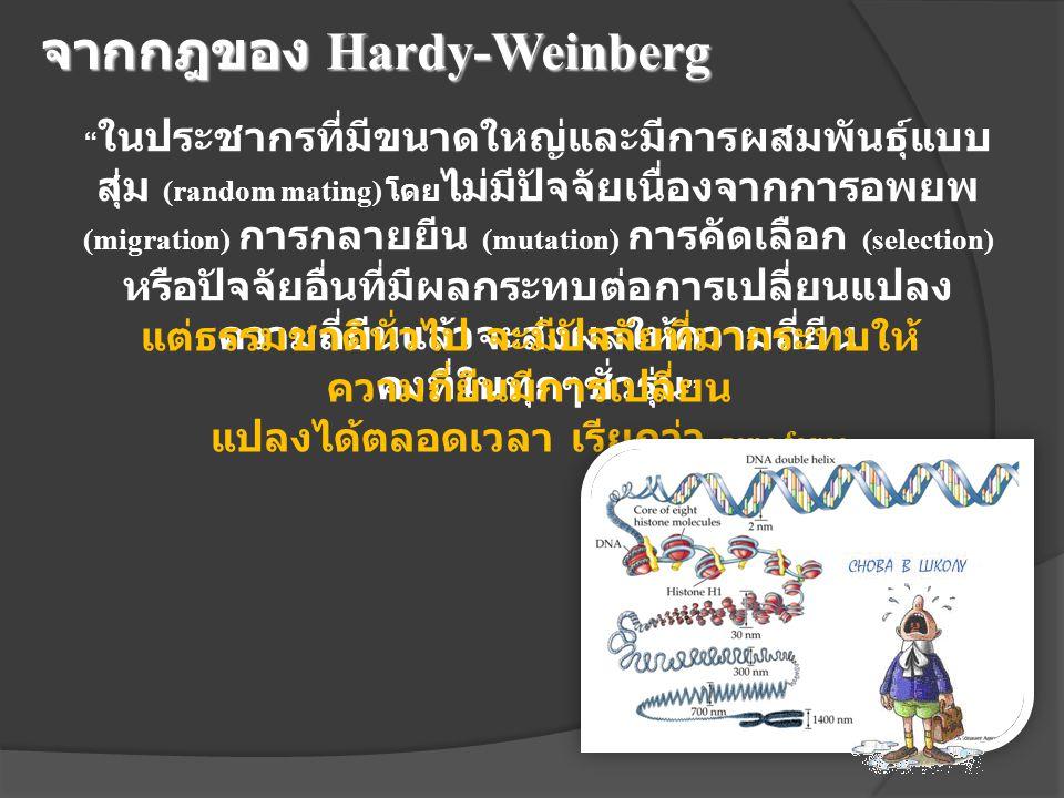 จากกฎของ Hardy-Weinberg