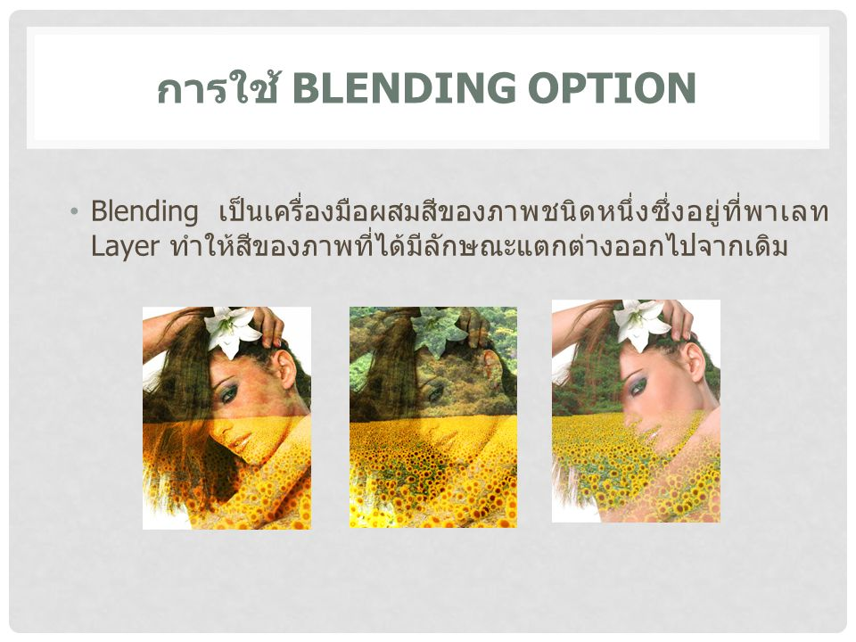 การใช้ Blending Option