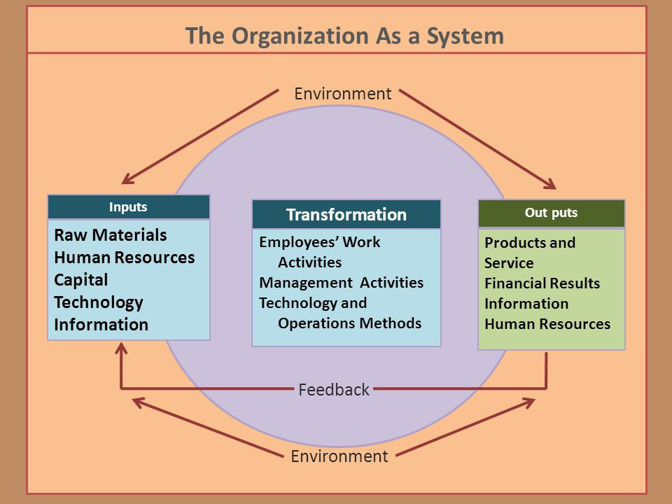 The Organization As a System