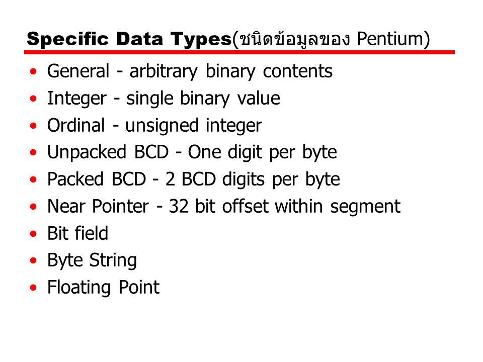 Specific Data Types(ชนิดข้อมูลของ Pentium)