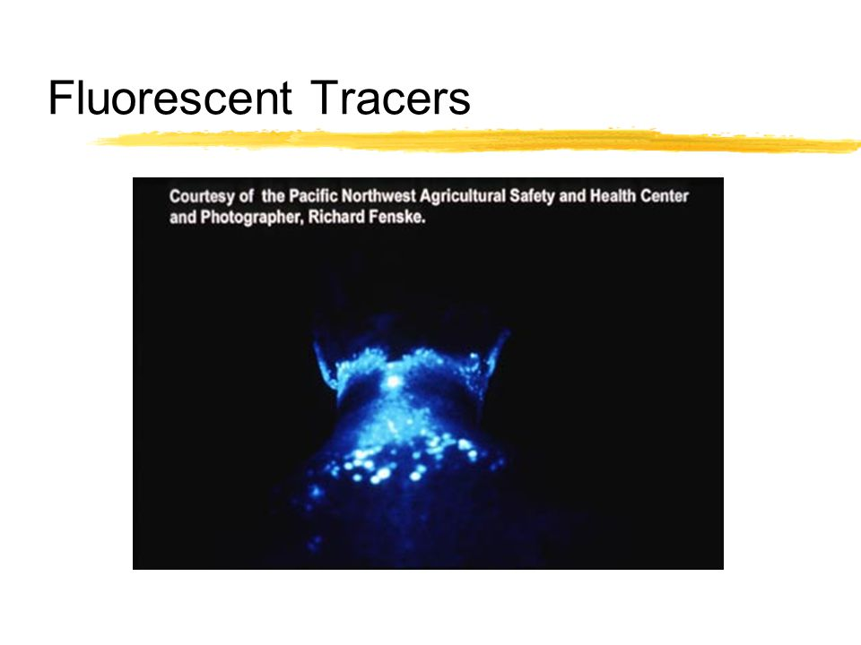 Fluorescent Tracers