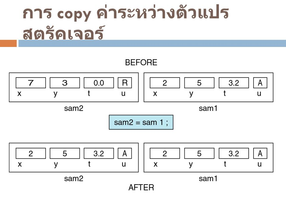 การ copy ค่าระหว่างตัวแปรสตรัคเจอร์