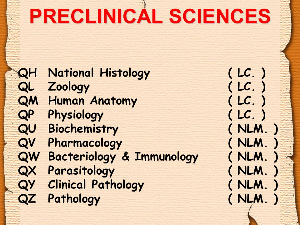 PRECLINICAL SCIENCES