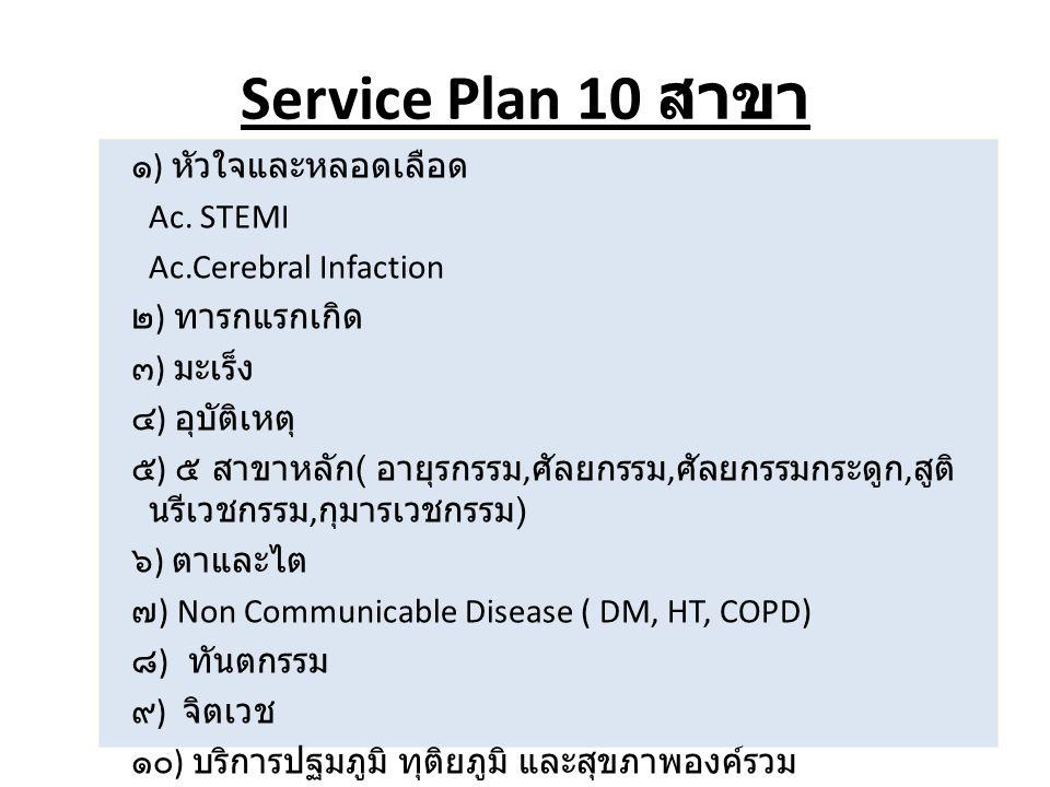 Service Plan 10 สาขา