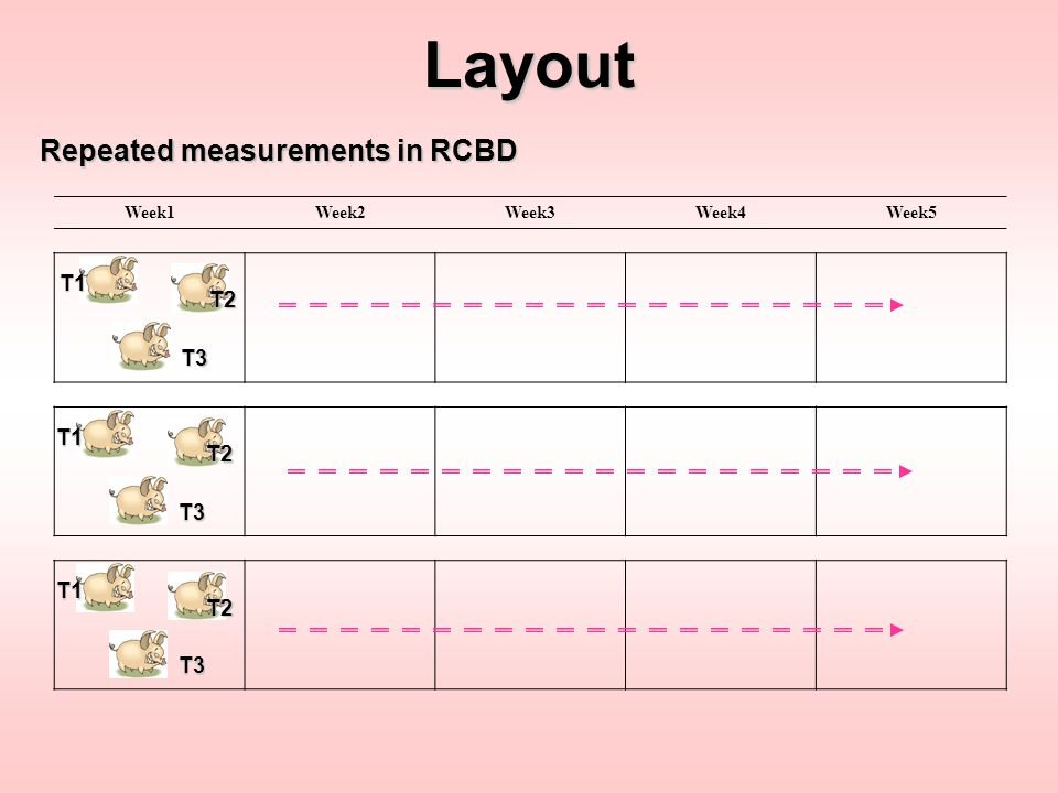 Layout Repeated measurements in RCBD T1 T2 T3 T1 T2 T3 T1 T2 T3 Week1