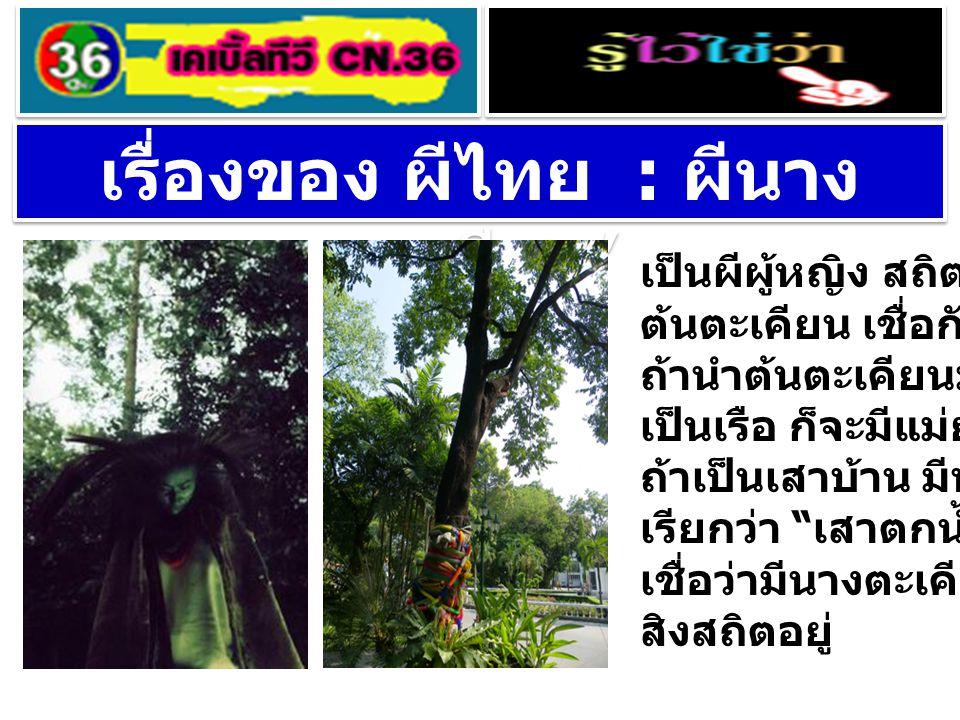 เรื่องของ ผีไทย : ผีนางตะเคียน'