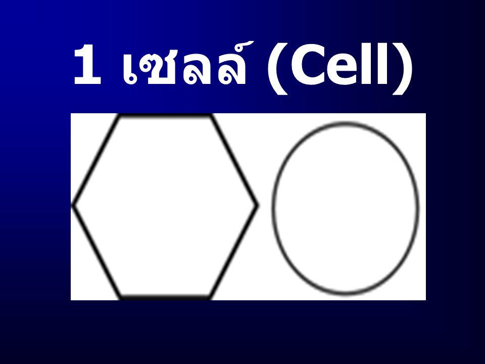 1 เซลล์ (Cell)