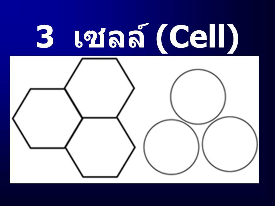 3 เซลล์ (Cell)