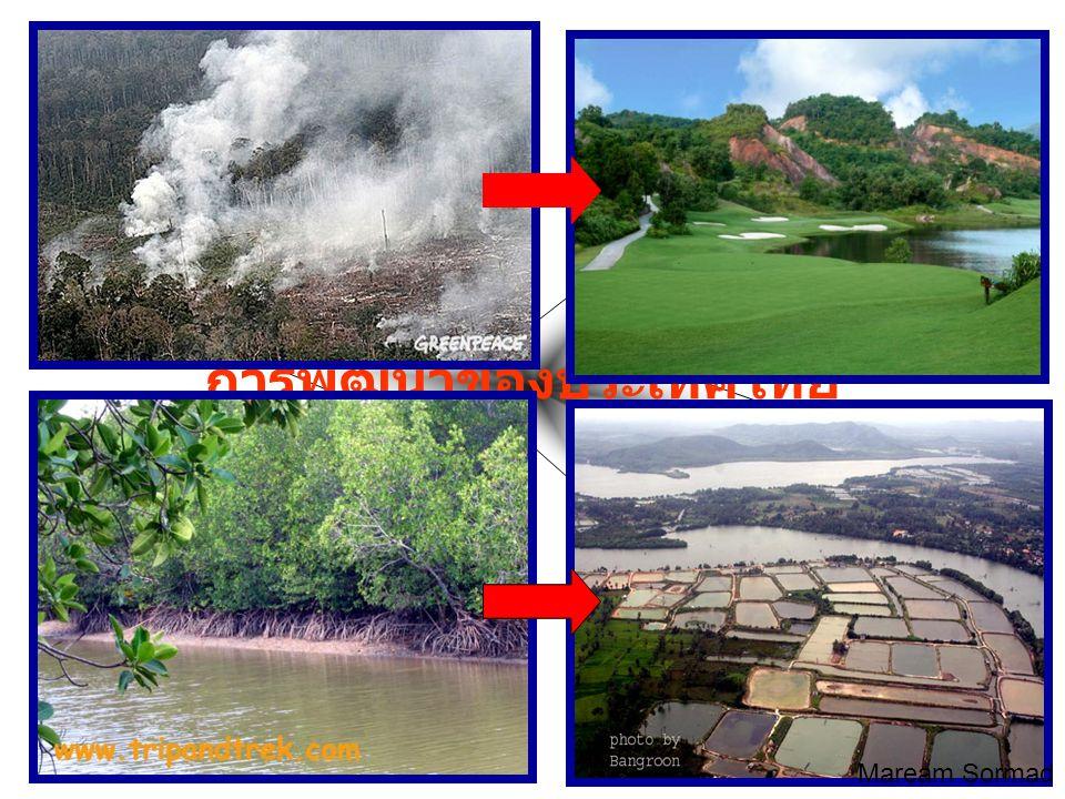 การพัฒนาของประเทศไทย