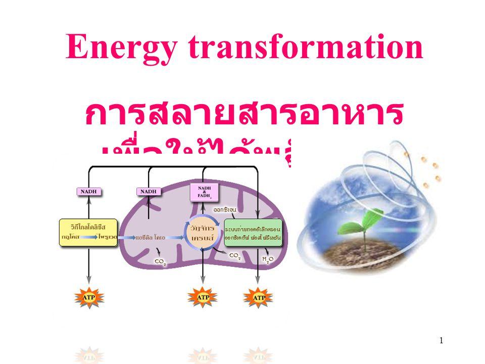 Energy transformation การสลายสารอาหารเพื่อให้ได้พลังงาน