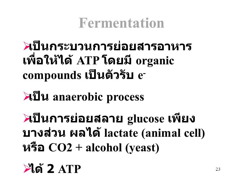Fermentation เป็นกระบวนการย่อยสารอาหาร เพื่อให้ได้ ATP โดยมี organic compounds เป็นตัวรับ e- เป็น anaerobic process.