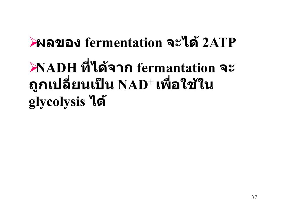 ผลของ fermentation จะได้ 2ATP
