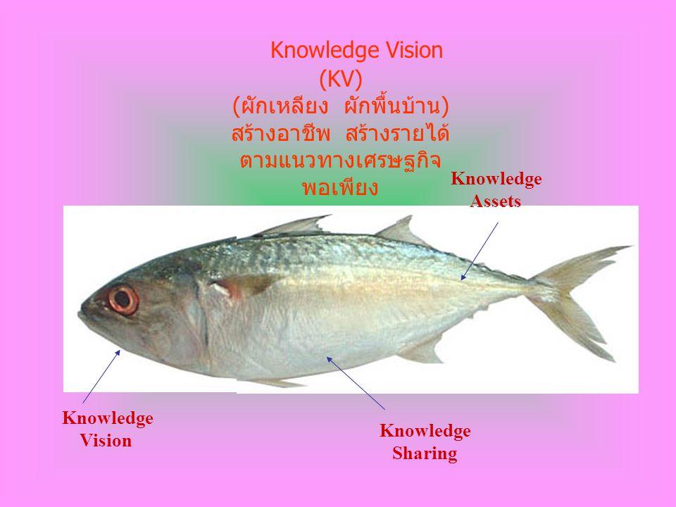 Knowledge Vision (KV) (ผักเหลียง ผักพื้นบ้าน)