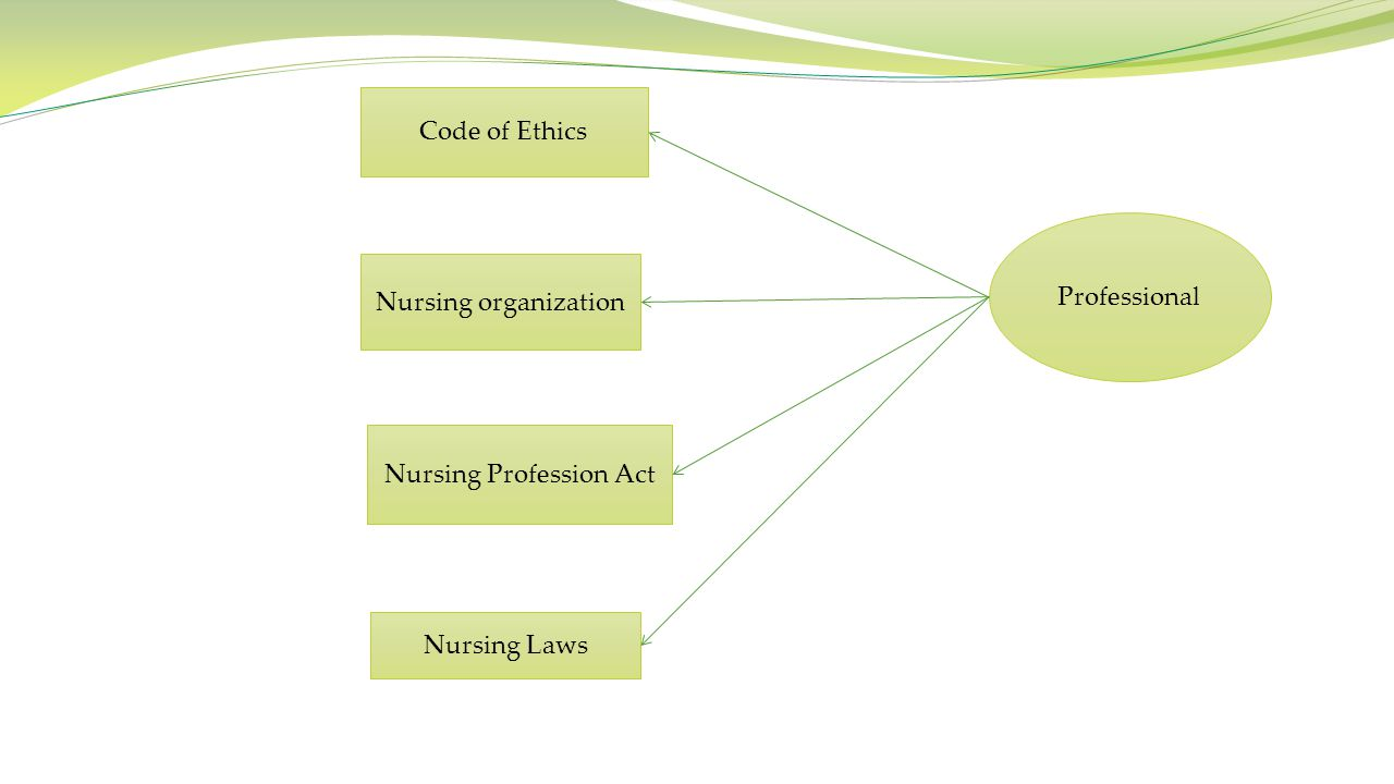 Nursing Profession Act