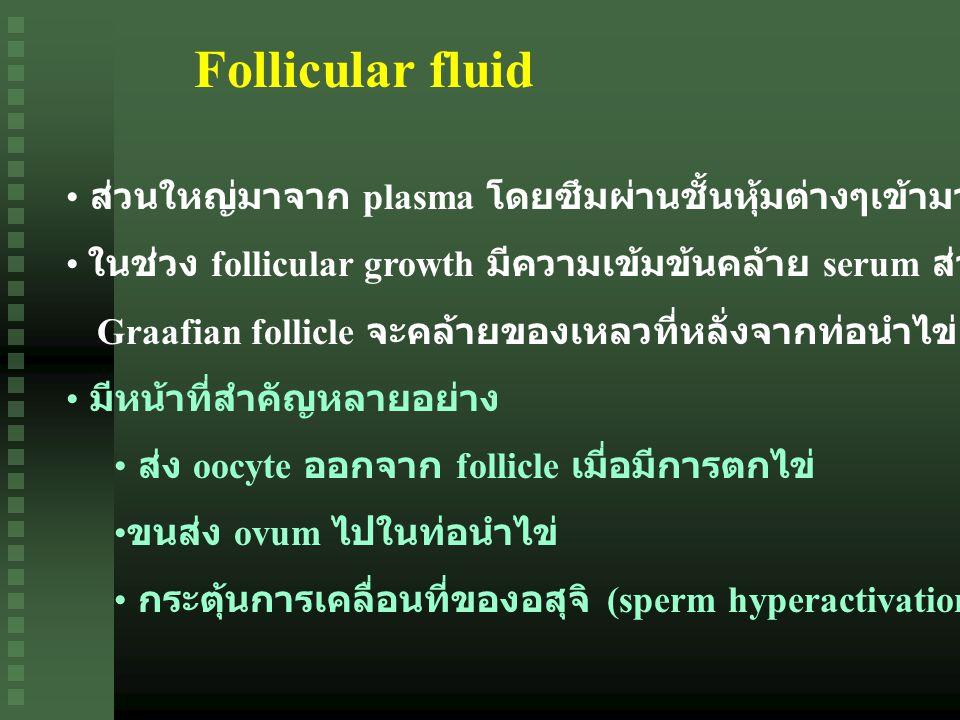 Follicular fluid ส่วนใหญ่มาจาก plasma โดยซึมผ่านชั้นหุ้มต่างๆเข้ามาสะสมที่ antrum. ในช่วง follicular growth มีความเข้มข้นคล้าย serum ส่วนในช่วง.