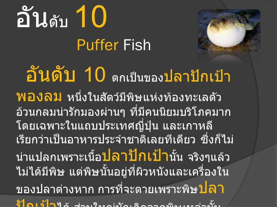 อันดับ 10 Puffer Fish