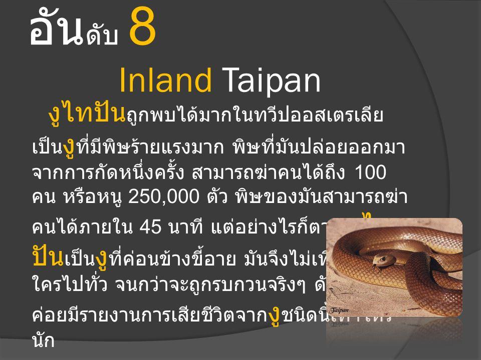 อันดับ 8 Inland Taipan