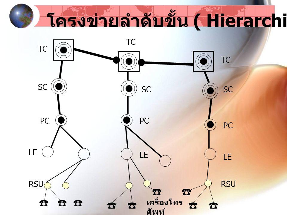 โครงข่ายลำดับขั้น ( Hierarchical Network )