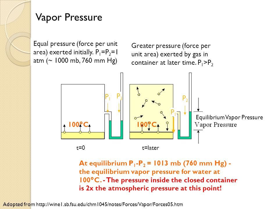Vapor Pressure Equal pressure (force per unit area) exerted initially. P1=P2=1 atm (~ 1000 mb, 760 mm Hg)