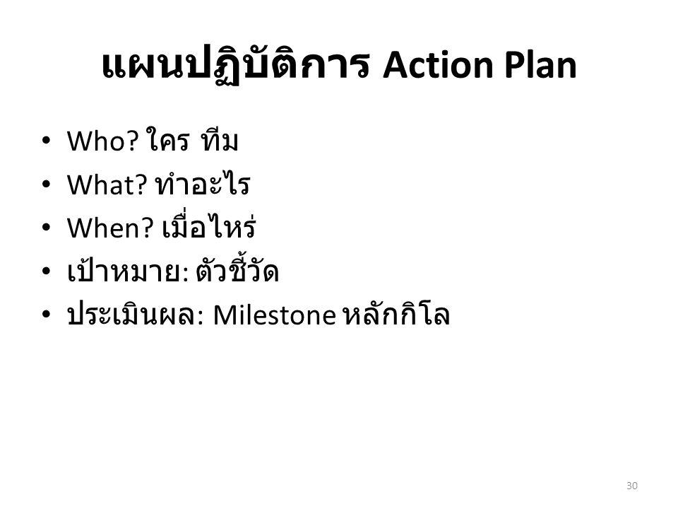 แผนปฏิบัติการ Action Plan