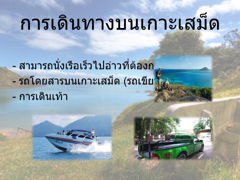 การเดินทางบนเกาะเสม็ด