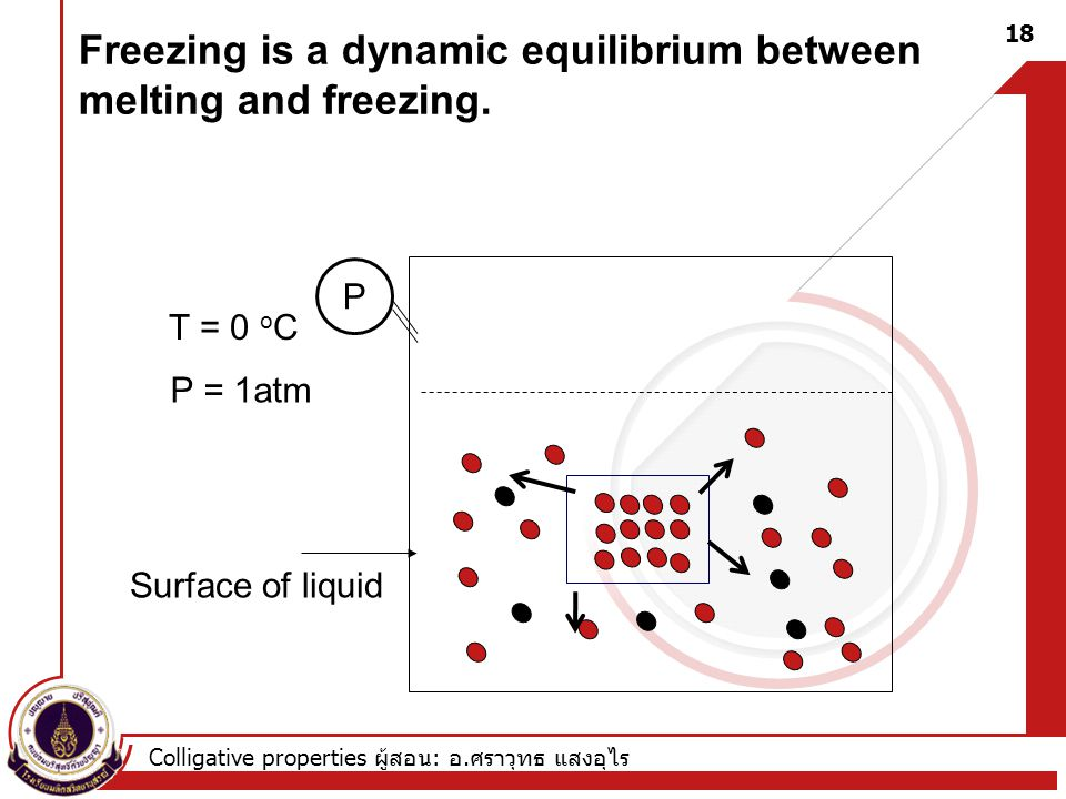 Freezing is a dynamic equilibrium between melting and freezing.