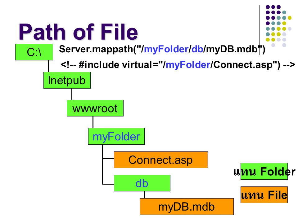 Path of File C:\ Inetpub wwwroot myFolder Connect.asp แทน Folder db