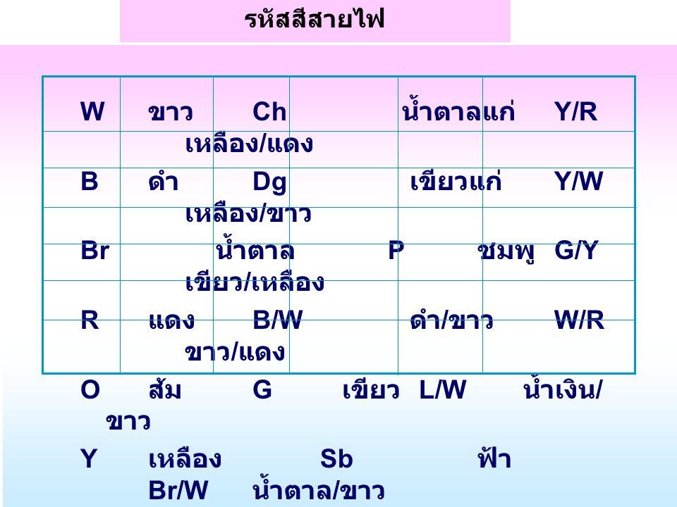 W ขาว Ch น้ำตาลแก่ Y/R เหลือง/แดง B ดำ Dg เขียวแก่ Y/W เหลือง/ขาว
