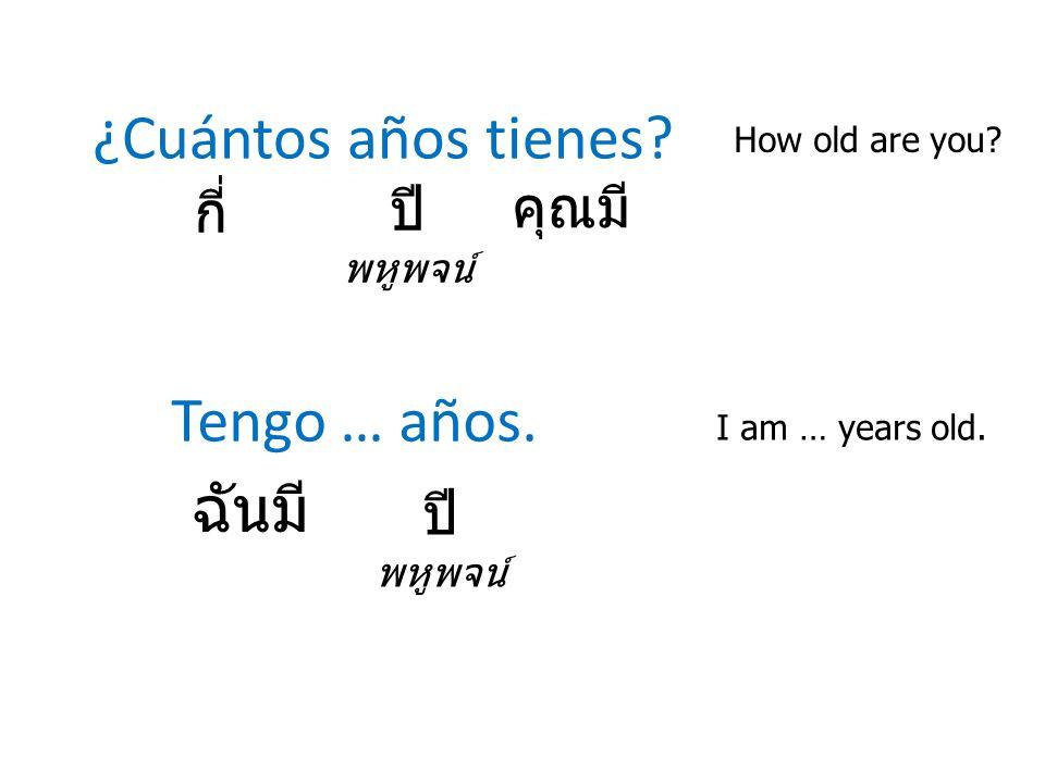 ¿Cuántos años tienes Tengo … años. ฉันมี คุณมี กี่ ปี ปี พหูพจน์