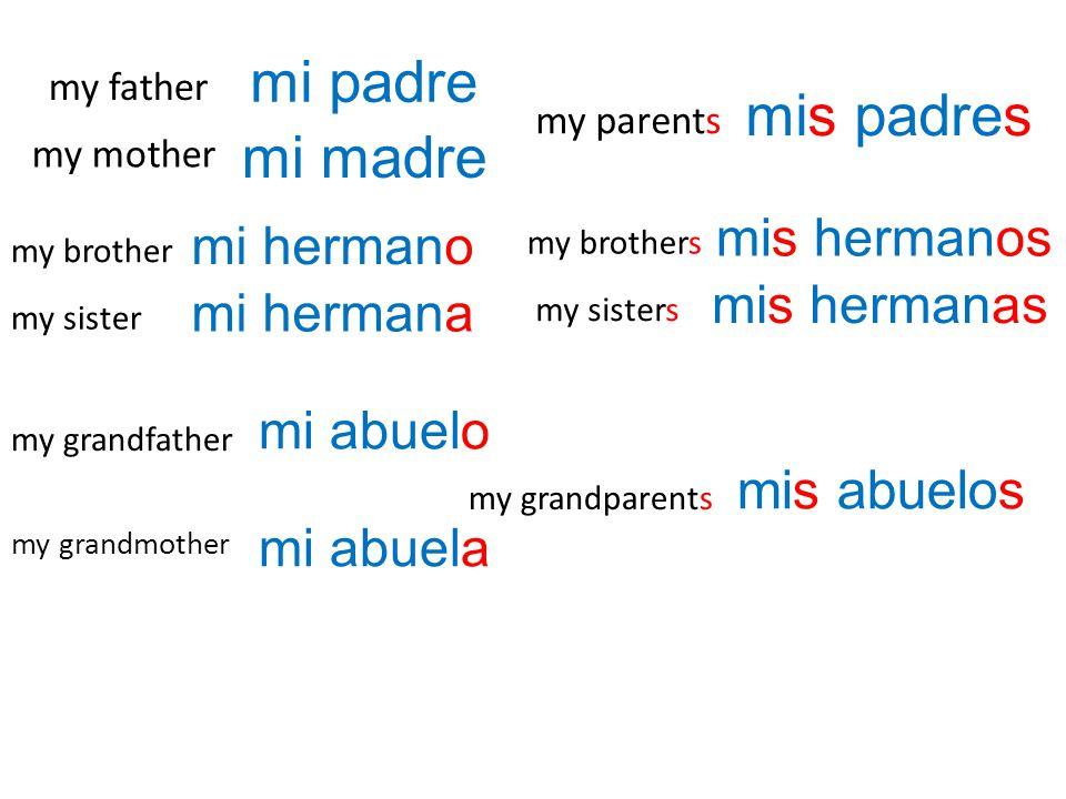 mi padre mis padres mi madre mis abuelos mis hermanos mi hermano