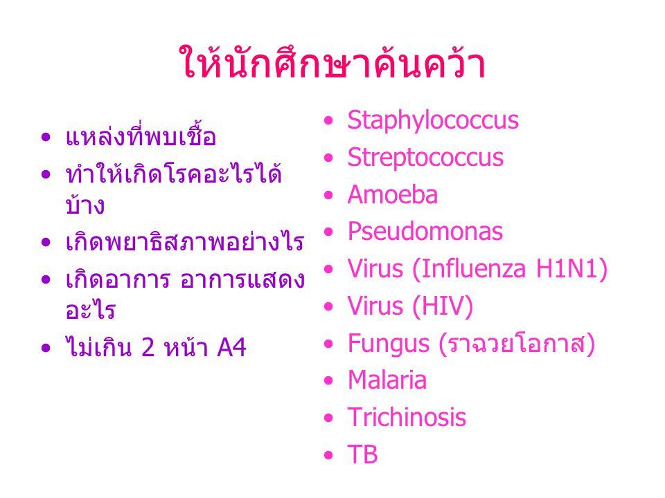 ให้นักศึกษาค้นคว้า Staphylococcus แหล่งที่พบเชื้อ Streptococcus