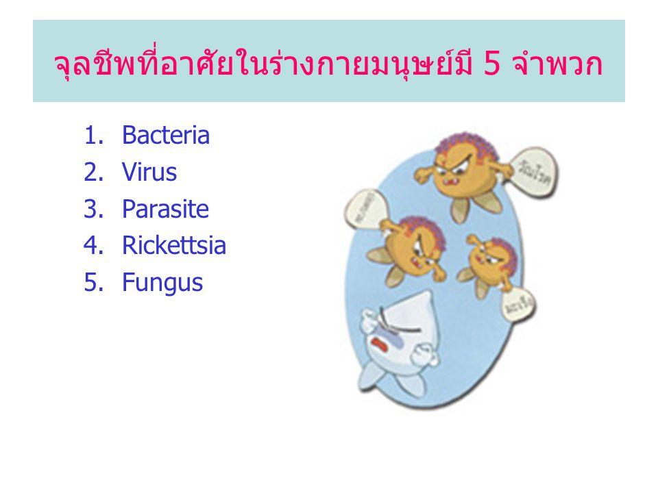 จุลชีพที่อาศัยในร่างกายมนุษย์มี 5 จำพวก