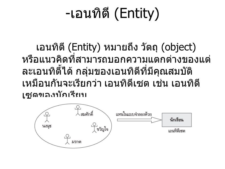 -เอนทิตี (Entity)